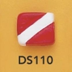 ds110.jpg
