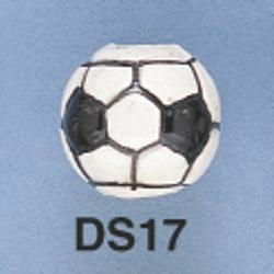 ds17.jpg