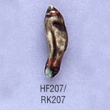 rk207.jpg
