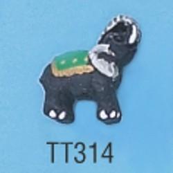 tt314.jpg