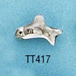 tt417.jpg